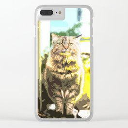 Tortoiseshell Cat Sitting on The Ground Clear iPhone Case