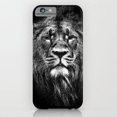 male asiatic lion iPhone 6s Slim Case
