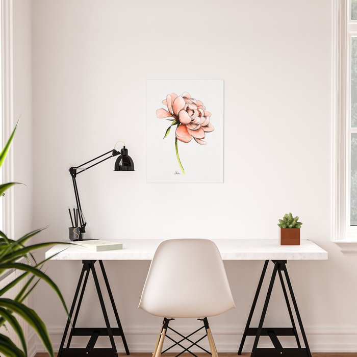 Coral Pink Peony Poster
