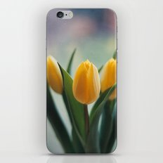 Yellow Tulips iPhone & iPod Skin
