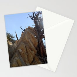 Tree leaning on rock Stationery Cards