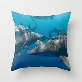 Lemon Shark School Throw Pillow