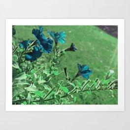 outside flowers blue Art Print