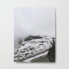 Below Mount Rainier Metal Print