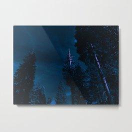 0333 Metal Print