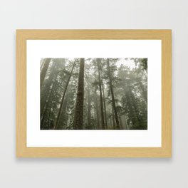 Memories of the Future - nature photography Framed Art Print