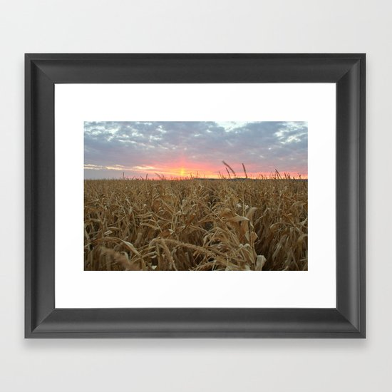 Corn Maze Sunset Framed Art Print