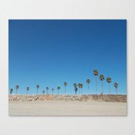 Lazy Palms Canvas Print