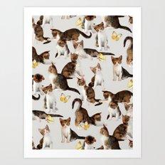 Kittens and Butterflies - a painted pattern Art Print