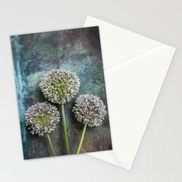 Three Allium Flowers Stationery Cards