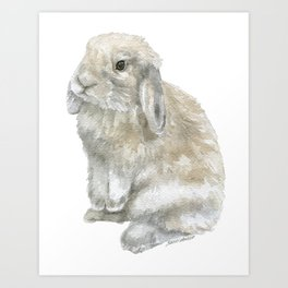 Lop Rabbit Watercolor Painting Bunny Art Print