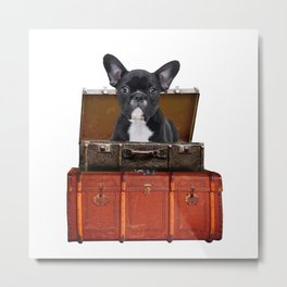 Frenchie French Bulldog - old suitcases -  Metal Print