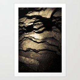 Brown Upstate New York Cave Art Art Print
