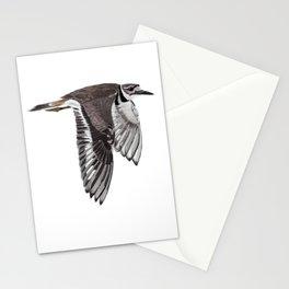Vociferus peruvianus - Charadrius - Killdeer - Chorlo gritón Stationery Cards