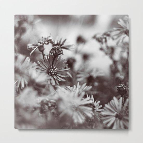 Grey Days Metal Print