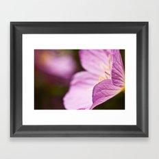 Summer Flower Framed Art Print
