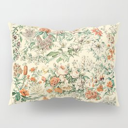 Wildflowers and Roses // Fleurs III by Adolphe Millot 19th Century Science Textbook Artwork Pillow Sham