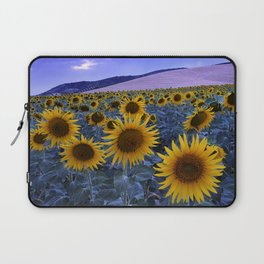 Sunflowers At Blue Hour . Square Laptop Sleeve