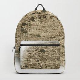 Ben Howard - Noonday Dream Backpack