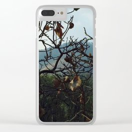 A Beautiful Day Clear iPhone Case