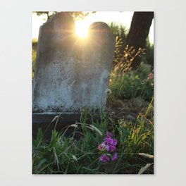 Looper's Cemetery 4 Canvas Print