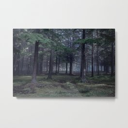 Spooky woodland in North Kessock, The Highlands, Scotland Metal Print