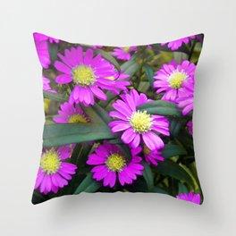 Fuchsia Daisy Flowers Throw Pillow