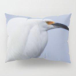 Modeling Assignment Pillow Sham