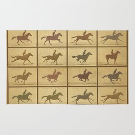 Time Lapse Motion Study Horse muted Rug