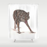 bad wolf Shower Curtains featuring Big bad wolf by Meredith Mackworth-Praed