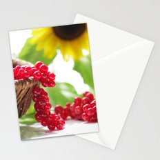 Red summer fruits image Stationery Cards