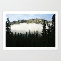 Through the Spruce Art Print