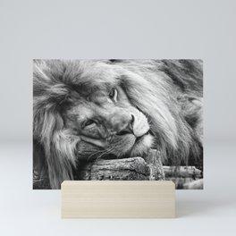 Big Lion King Mini Art Print