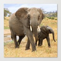 elephants Canvas Prints featuring Elephants by go.designg