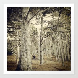 Pebble Cypress Art Print