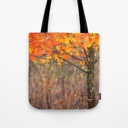 Autumn In Connecticut Tote Bag