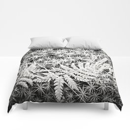 Moss and Ferns Comforters