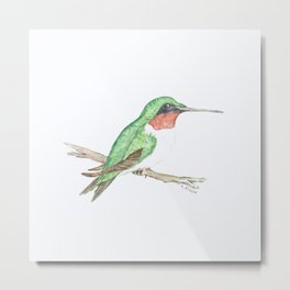 Hummingbird Jewel Metal Print
