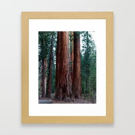 The Word For World Is Forest Framed Art Print
