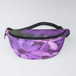 A Beautiful Day Fanny Pack