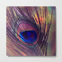 purple peacock feather  Metal Print