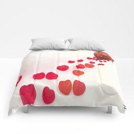 Enamorado Comforters
