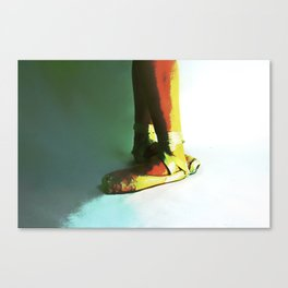 fifth  Canvas Print
