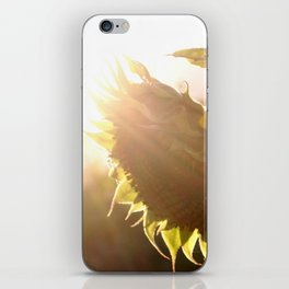 salute to the Sun as a sunflower iPhone Skin