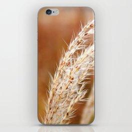 Fall Wind iPhone Skin