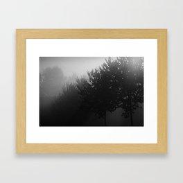 Trees in the Mist (1) Framed Art Print