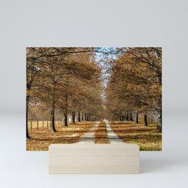 Country Road Mini Art Print