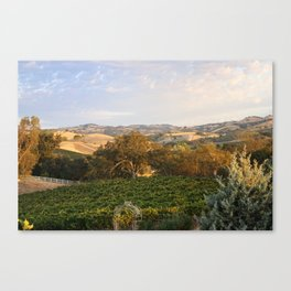 Paso Robles Hills Canvas Print