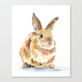 Bunny Rabbit Watercolor Painting - Woodland Animal Art Canvas Print
