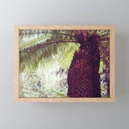 Fern Rainforest Framed Mini Art Print